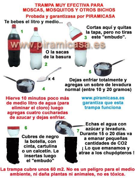 Trampa para mosquitos y otros insectos casera y efectiva - Como ahuyentar avispas ...